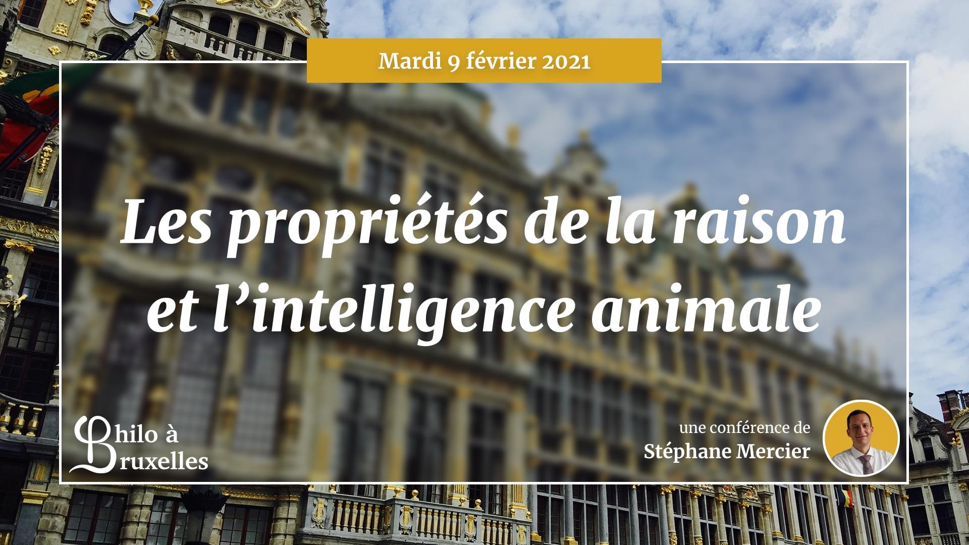 Les propriétés de la raison et l'« intelligence » animale